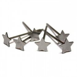 6 Clous Starnails
