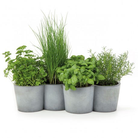 Little herbs concret pot PotPot by Konstantin Slawinski